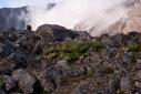 Ignatio in the Corcavado Crater