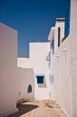 A street in Sidi Bou Said