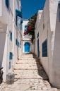 Around the streets of Sidi Bou Said