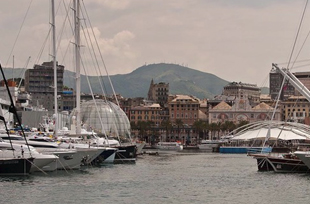 Yacht Shows & Events