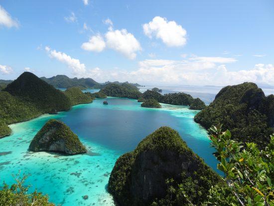 Indonisia Raja Input