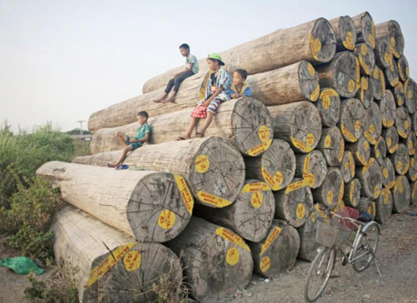 European companies have been exposed by an international environmental watchdog as having possibly imported illegal shipments of teak